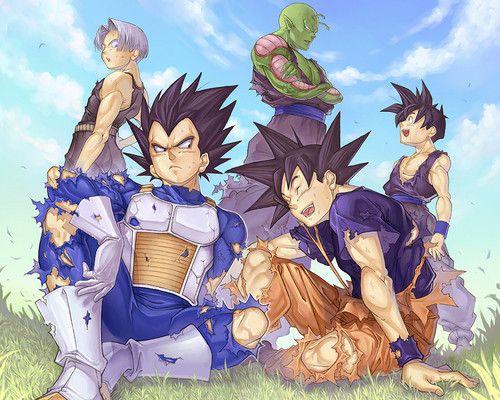 Dragon Ball Z wallpaper possibly containing anime titled *Goku & Vageta*