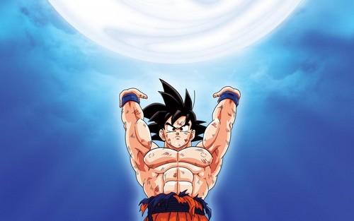 龙珠Z 壁纸 titled *Goku*