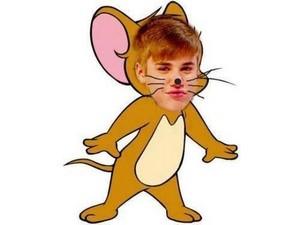 """Jerry"""