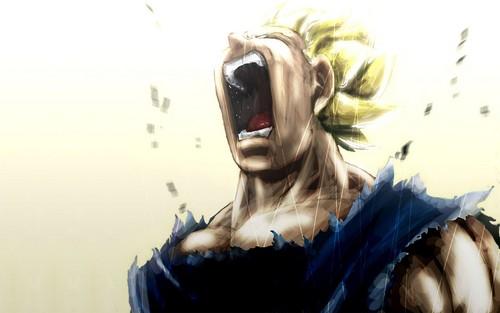 Dragon Ball Z fond d'écran entitled *Vageeta*