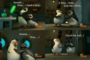 Aaaaah Shoe....!