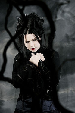 Evanescence wallpaper possibly with a chainlink fence called Amy Lee