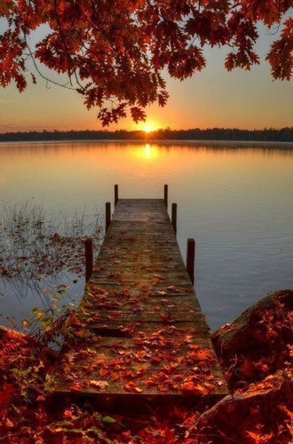 Mother Nature wallpaper titled Autumn