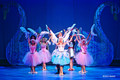 Barbie as Swan Lake Live Show 2013
