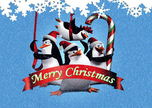 navidad with the penguins