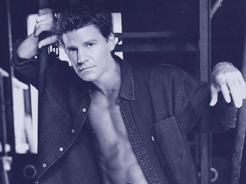 David Boreanaz wallpaper titled Dave<3