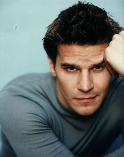 David Boreanaz wallpaper probably with a portrait called David Boreanaz