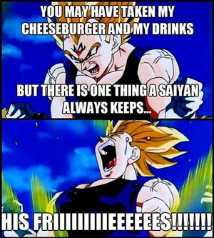 Don't take Vegeta's Food