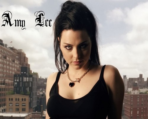 Evanescence wallpaper with a portrait entitled Amy Lee