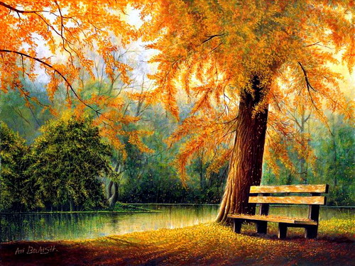 cynthia-selahblue (cynti19) 壁纸 containing a park bench, a beech, and a live oak called Fall 壁纸