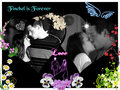 Finchel Forever - finn-and-rachel fan art
