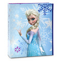 Frozen Merchandise from Disney Store
