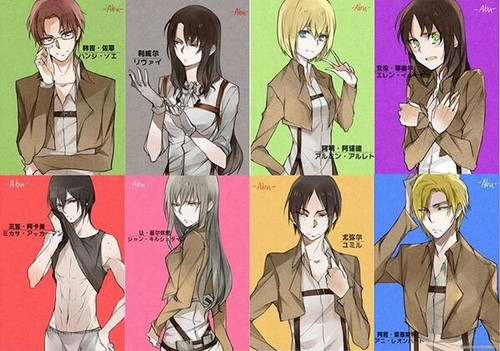 Shingeki no Kyojin (Attack on titan) wallpaper with anime entitled Gender-Bender Characters