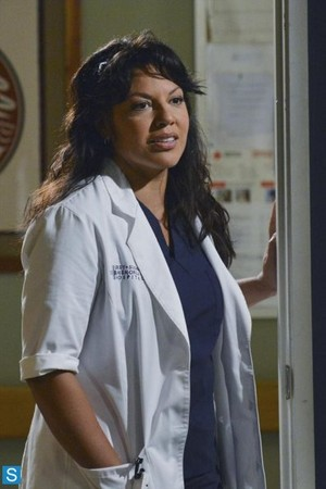 Grey's Anatomy - Episode 10.03 - Everybody's Crying Mercy - Larger Promotional foto's