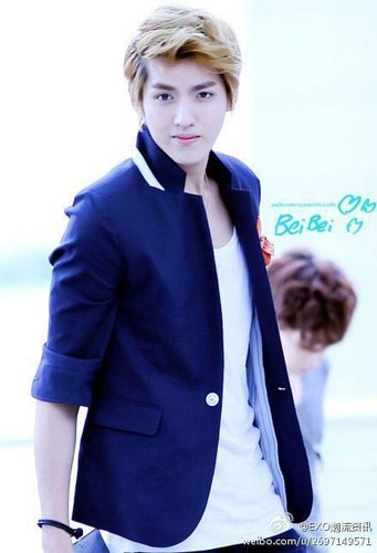 KRIS wallpaper with a well dressed person titled Kris!<3