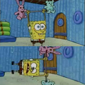 Lol - spongebob-squarepants photo