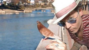 Lucky pigeon :)