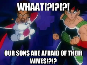 Our Sons Are Afraid of Their Wives