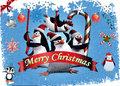 Penguins at Christmas!!
