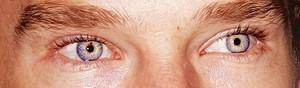 इंद्रधनुष Eyes