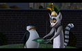Skipper and Julien - penguins-of-madagascar photo