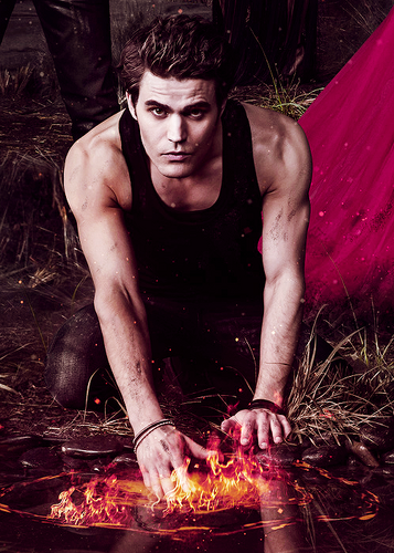 Stefan Salvatore 壁纸 with a barbecue titled Stefan/Silas