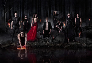 TVD Season 5 Poster (Textless Version)