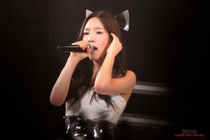 Taeyeon সঙ্গীতানুষ্ঠান 130914