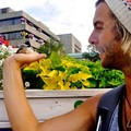 bird man - keith-harkin photo