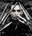 edward scissorshand - edward-scissorhands photo