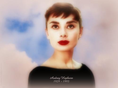 오드리 헵번 바탕화면 containing a portrait entitled Audrey Hepburn 1929-1993