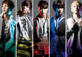 shinee-2013  - the-group-shinee photo