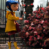 Coraline photo possibly containing a street and a pelican crossing called ★ Coraline ☆