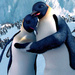 ★ Happy Feet ☆  - happy-feet icon