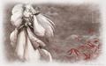 inuyasha - *Sesshomaru* wallpaper