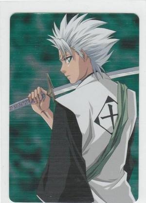 *Toushirou Hitsugaya*