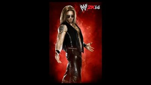 WWE 2K14 - Heath Slater
