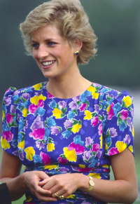 Prinzessin Diana Hintergrund possibly with a portrait called Diana