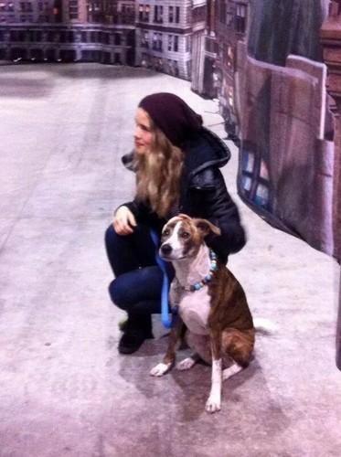 Emily Bett Rickards Hintergrund entitled Emily an her dog