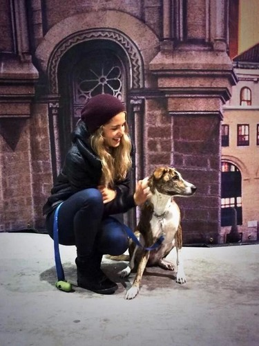 Emily Bett Rickards fond d'écran possibly containing a whippet titled Emily an her dog