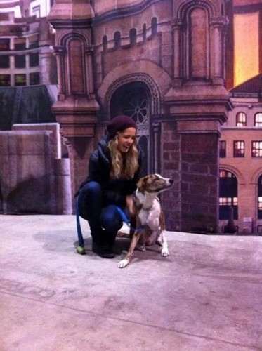 Emily Bett Rickards fond d'écran with a rue called Emily an her dog