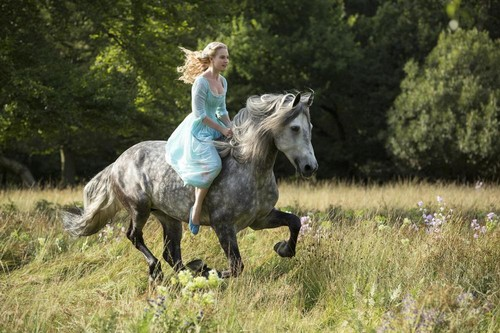 Disney wallpaper with a lippizan and a horse trail titled First Look on Disney's Live-action Cinderella