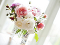 Flowers - flowers photo