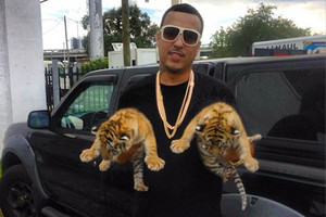 French Montana with baby lions in his hands