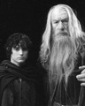 Gandalf and Frodo - lord-of-the-rings photo