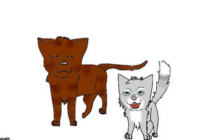 Ivypaw and Hawkfrost