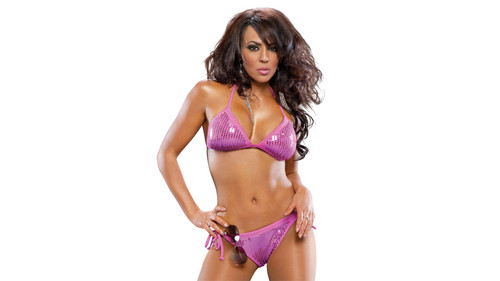 Layla (WWE) fond d'écran with a bikini called Layla