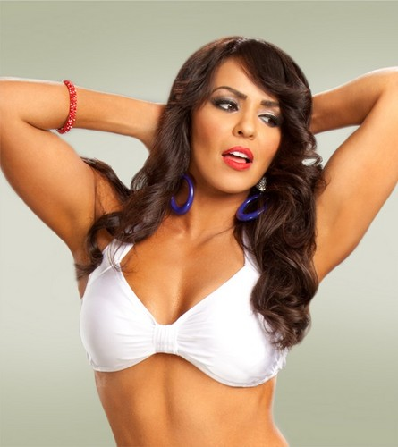 WWE 레일라 바탕화면 probably with attractiveness, a bikini, and a brassiere called Layla