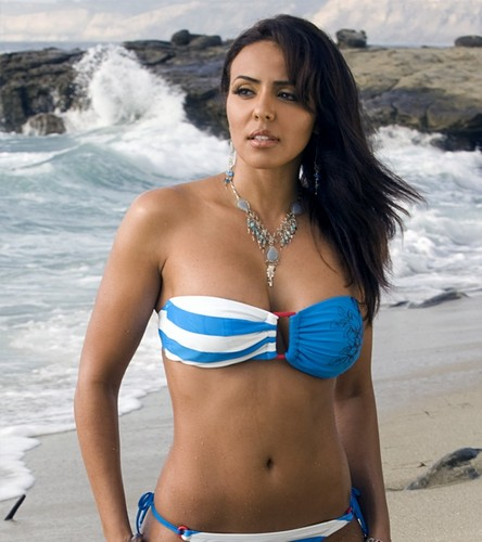 wwe layla fondo de pantalla containing a bikini entitled Layla