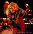 Led Zepplin/Robert Plant - led-zeppelin photo